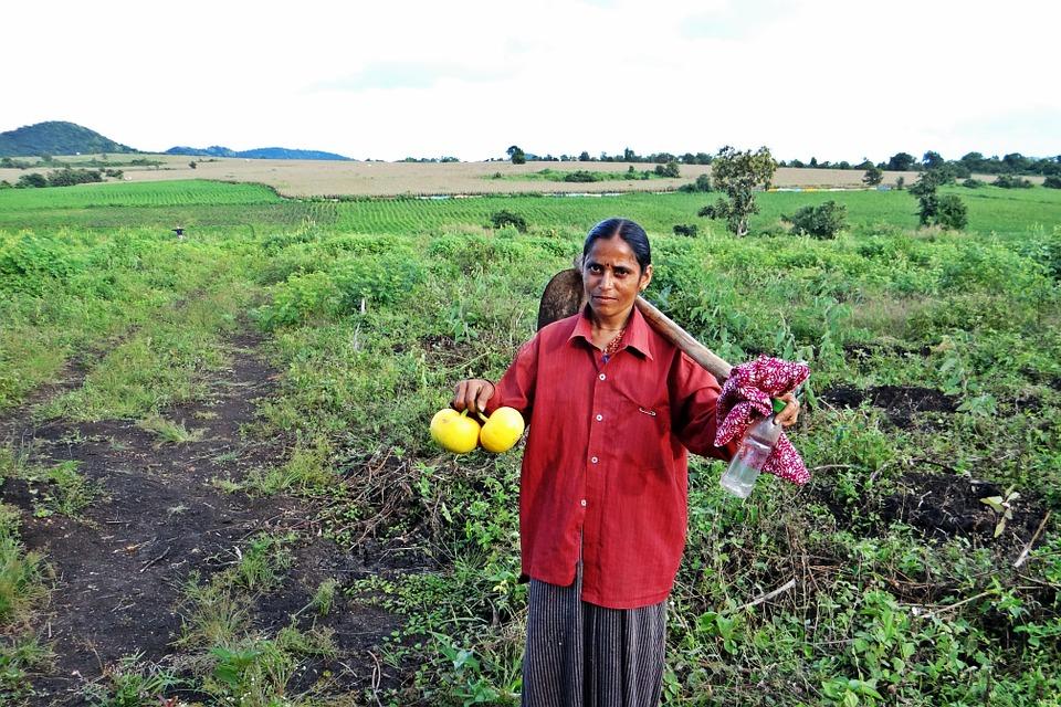 Pożyczka pod zastaw gospodarstwa rolnego